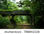 old concrete overpass on a...   Shutterstock . vector #788842228