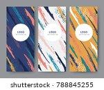 branding packaging pattern... | Shutterstock .eps vector #788845255