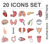 human organs cartoon icons in... | Shutterstock .eps vector #788874646