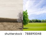 ecology concept change tree...   Shutterstock . vector #788890048