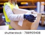 female warehouse worker loading ...   Shutterstock . vector #788905408