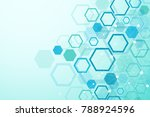 Hexagonal geometric background. Hexagons genetic and social network. Future geometric template. Business presentation for your design and text. Minimal graphic concept. Vector illustration | Shutterstock vector #788924596