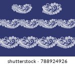 seamless  lace  floral  ... | Shutterstock .eps vector #788924926