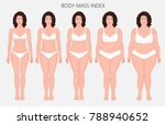 vector illustration human body... | Shutterstock .eps vector #788940652