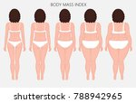 vector illustration human body... | Shutterstock .eps vector #788942965
