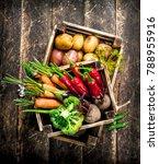 organic food. harvest of fresh... | Shutterstock . vector #788955916