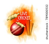 cricket championship  playing... | Shutterstock .eps vector #789000532