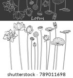 Stock vector collection lotus flower with line art on white backgrounds vector hand drawn illustration 789011698