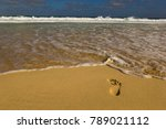a single foot print in the sand ... | Shutterstock . vector #789021112