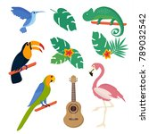 summer tropical graphic... | Shutterstock .eps vector #789032542