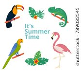 summer tropical graphic... | Shutterstock .eps vector #789032545