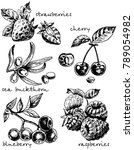 ink hand drawn style berry set. ... | Shutterstock . vector #789054982