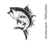 fish white and black  isolated... | Shutterstock .eps vector #789216262