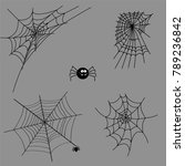cobweb set spider web halloween ... | Shutterstock .eps vector #789236842