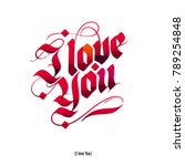 i love you  valentines day... | Shutterstock .eps vector #789254848