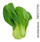 vegetable  delicious fresh...   Shutterstock . vector #789271792