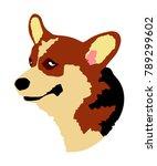 dog portrait of welsh corgi... | Shutterstock .eps vector #789299602