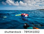 san andres island  colombia _... | Shutterstock . vector #789341002