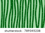 bamboo. abstract pattern.... | Shutterstock .eps vector #789345238