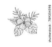 tropical flowers   hibiscus ...   Shutterstock .eps vector #789354598