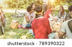 happy friends making picnic... | Shutterstock . vector #789390322