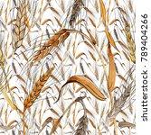 wildflower spica flower pattern ... | Shutterstock . vector #789404266