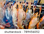 river shrimp or river prawn... | Shutterstock . vector #789456052