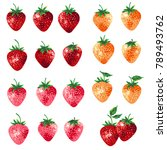 illustration of the strawberry  ... | Shutterstock .eps vector #789493762