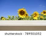 wood table top on blur field of ... | Shutterstock . vector #789501052