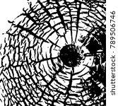 vintage effect grit texture.... | Shutterstock .eps vector #789506746