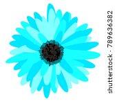 gerbera daisy isolated. vector... | Shutterstock .eps vector #789636382