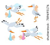 cartoon flying storks and stork ... | Shutterstock .eps vector #789695176