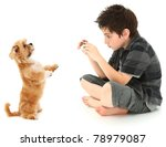 adorable 8 year old boy... | Shutterstock . vector #78979087