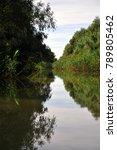calm water in the danube delta | Shutterstock . vector #789805462