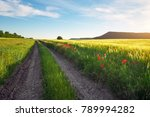 landscape with dirt road... | Shutterstock . vector #789994282