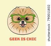smart spitz dog in glasses.... | Shutterstock .eps vector #790011832