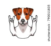 illustration of jack russell... | Shutterstock .eps vector #790011835