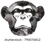 black and white monochrome... | Shutterstock . vector #790076812