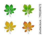 color variations of chestnut