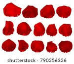 Stock photo rose petals isolated on white background with clipping path 790256326