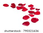 Stock photo red rose petals isolated on white background 790321636