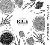 vector frame with rice . hand...   Shutterstock .eps vector #790387165