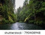 national park bohemian... | Shutterstock . vector #790408948