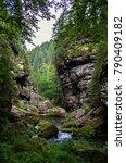 national park bohemian... | Shutterstock . vector #790409182