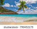 coconut palm over paradise... | Shutterstock . vector #790452175
