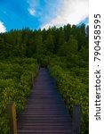 bridge to nature  natural... | Shutterstock . vector #790458595