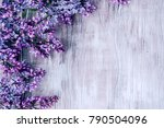 spring background with blooming ... | Shutterstock . vector #790504096