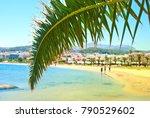 Palm Leaf On The Coastal Strip...