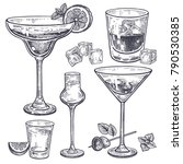 Alcoholic Drinks Set. Margarit...