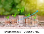tree growing on coins stack and ... | Shutterstock . vector #790559782